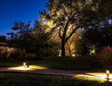 Front yard walkway and tree LED lighting